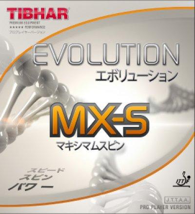 画像1: 【卓球丼さん愛用】エボリューションMX-S【カットマンにオススメ】