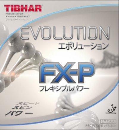 画像1: エボリューションFX-P