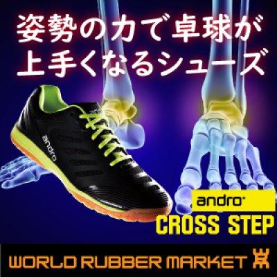画像1: 【姿勢の力で卓球上達】クロスステップ
